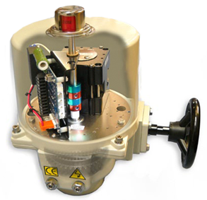 Cross Section of P2 Series electric actuator